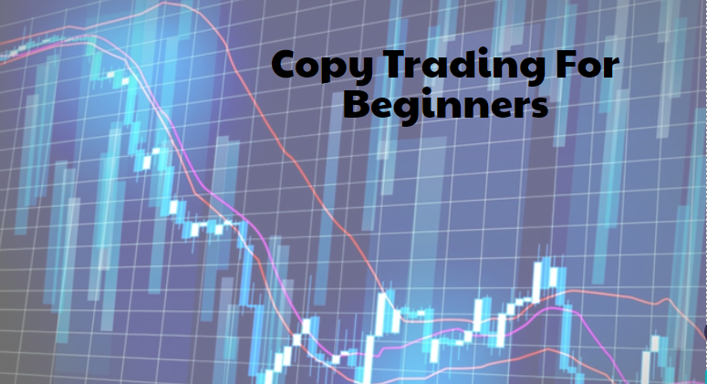 Copy Trading For Beginners