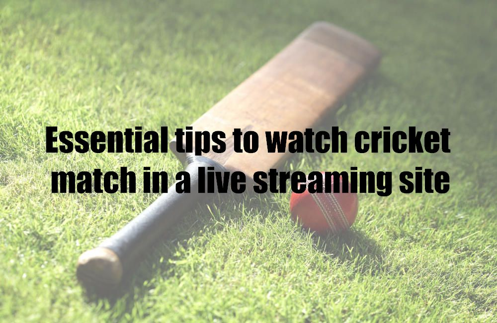Essential tips to watch cricket match in a live streaming site