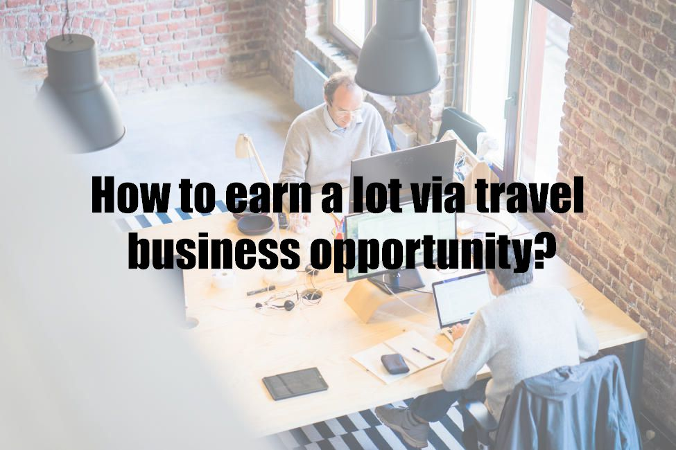 How to earn a lot via travel business opportunity?