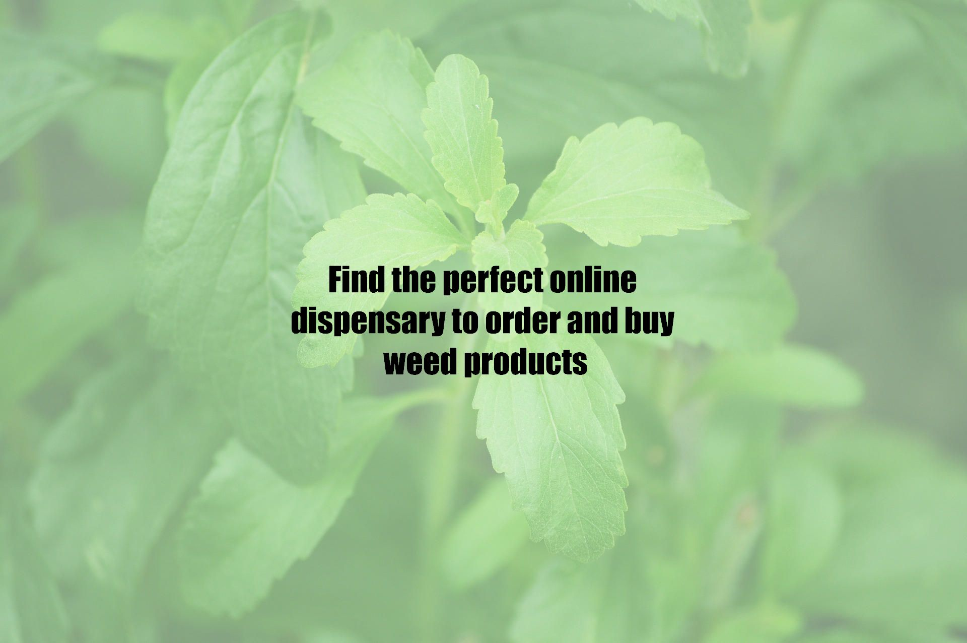 Find the perfect online dispensary to order and buy weed products